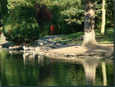 Park Lake 24-08-2003 030